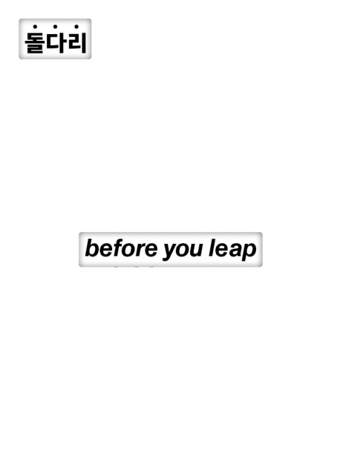 돌다리 before you leap